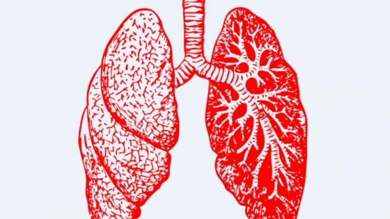 Conventional MRI shows promise for measuring lung function in asthmatics